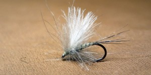 GP CDC Caddis