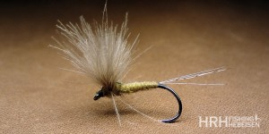 CDC Split Wing, Olive/Natural